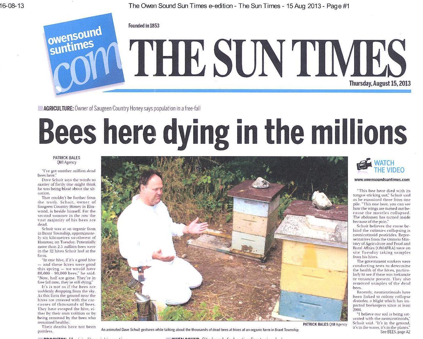 Bijen 001